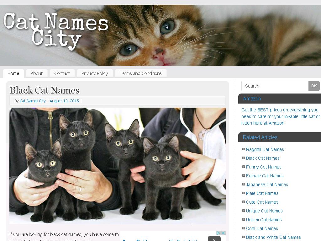 Cat Names City - Web Directory